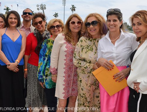 Critical Funds, Awareness Raised for Horses at Gulfstream Park