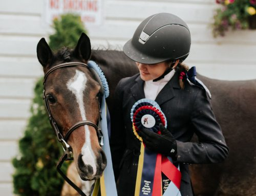 Against All Odds: Rescue Pony Overcomes Abusive Past  and Shines in the Show Ring