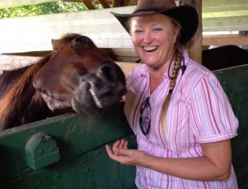 Local trainer Ginger Young Krenz takes reins of SFSPCA volunteer program