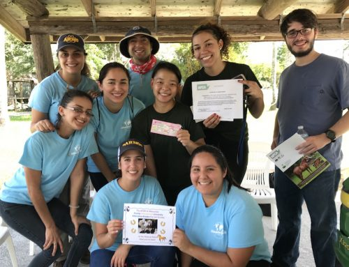 FIU Pre-Vet Students Pitch In at SFSPCA
