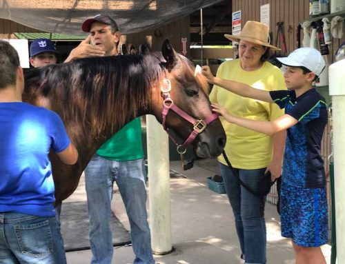 Cushman School students cap fundraising effort with visit to SFSPCA